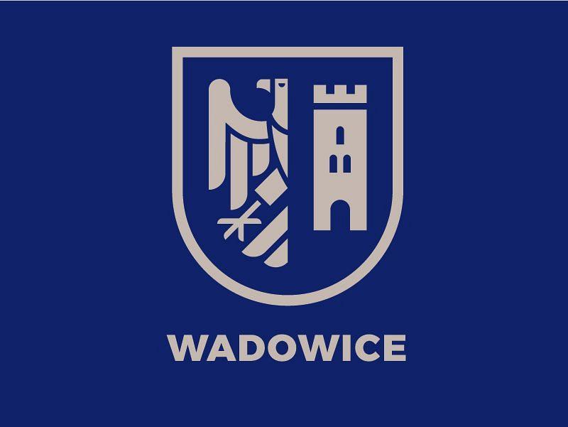 Wsparcie edukacyjne, doradcze i animacyjne dla Wadowickich Organizacji Pozarządowych