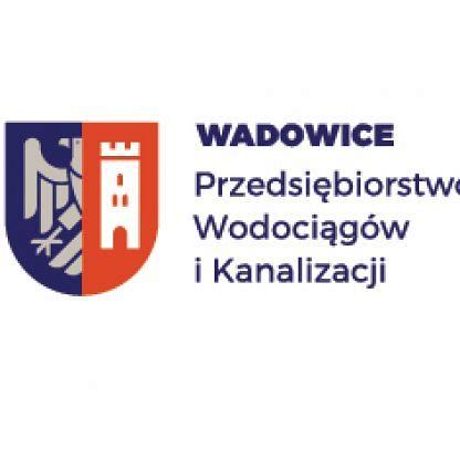 Naprawa uszkodzonej sieci kanalizacji sanitarnej w ulicy Wojska Polskiego