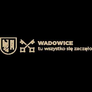 Wadowice 24 min - Logotypy do pobrania