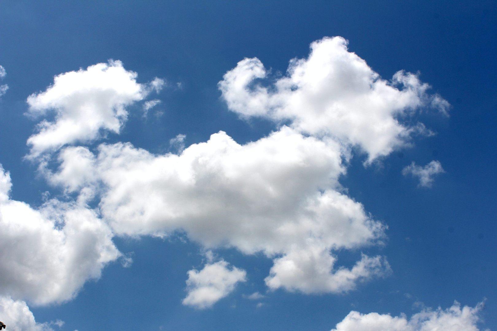 Nowy Program Ochrony Powietrza już obowiązuje