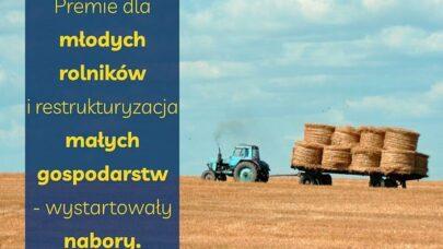 Premie dla młodych rolników i restrukturyzacja małych gospodarstw