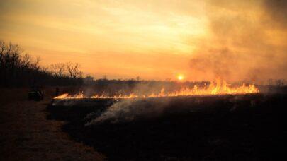 Apel Straży Pożarnej o zaniechanie szkodliwego wypalania traw