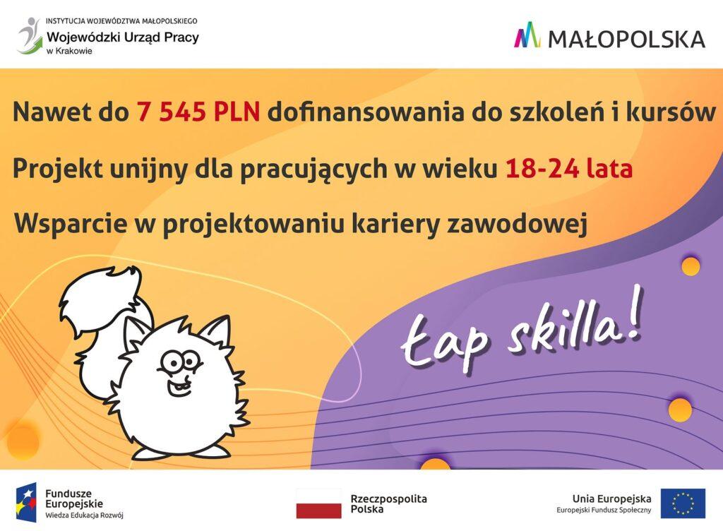 """Lap skilla 1024x752 - II tura rekrutacji do projektu """"Łap skilla!"""""""